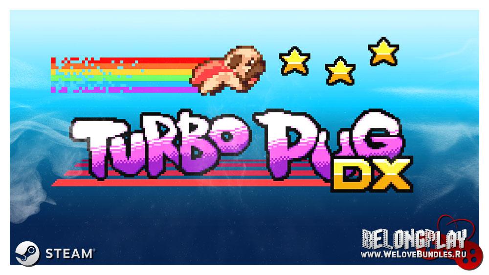 Turbo Pug DX art logo game wallpaper