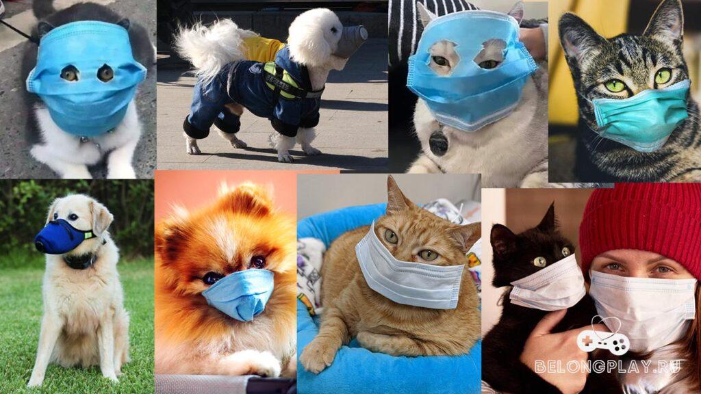 animals in masks game art logo
